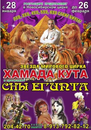 Сны Египта  в Новсибирском цирке
