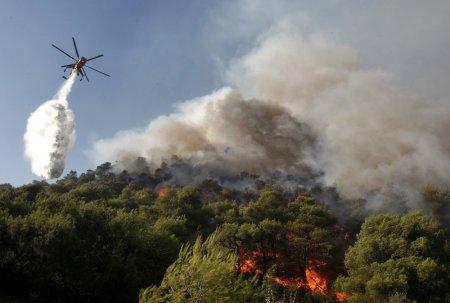 Новосибирская область готовится к лесным пожарам