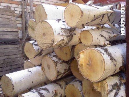 Лесопромышленный комплекс области произвел в 2011 году продукции на сумму почти 1 млрд. рублей
