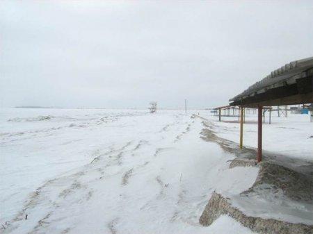 Организаторы «Лыжни России» готовы перенести трассу к пляжу «Наутилус»