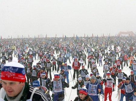 «Лыжня России» в Новосибирской области прошла на высоком организационном уровне