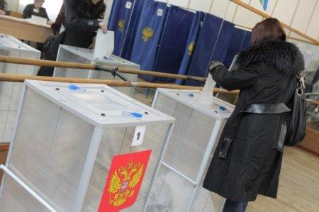Явка на выборах президента в Новосибирске превысила 60%