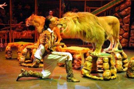 Как провести три выходных дня в Новосибирске: 300 животных в цирке, бал в Доме ученых и «Оргия праведников»