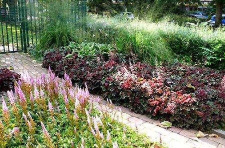 В «Дачной академии» пройдут занятия для садоводов и огородников