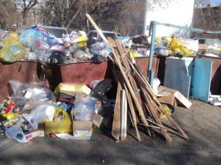 На ул. Немировича-Данченко пять дней не вывозили мусор