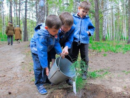 В наукограде Кольцово высадили семейную аллею