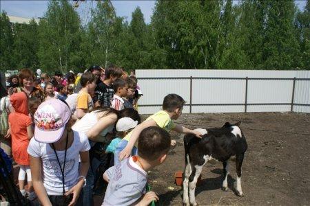 В Новосибирске открылся контактный зоопарк