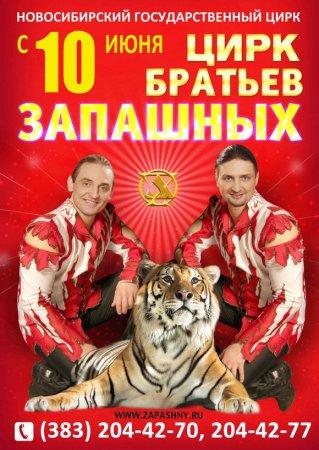 Цирк Братьев Запашных 10 июня Новосибирский цирк