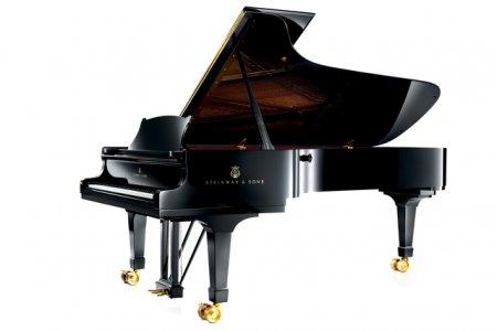 Музыкальная школа в Новосибирске заказала рояль за 6 миллионов рублей