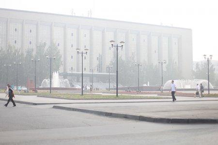 МЧС предупредило о дымке и запахе гари