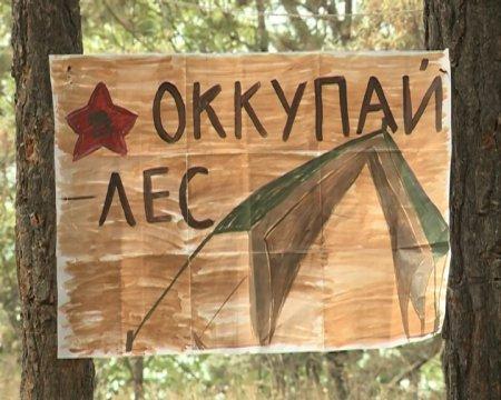 """Молодёжный лагерь """"Оккупай-Лес"""""""