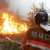 Пожароопасная обстановка в НСО спокойная