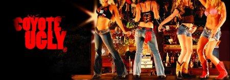 Легендарный американский бар «Coyote Ugly»  («Гадкий Койот»)  приходит в Новосибирск