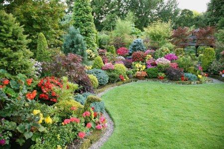 Основы семенного и вегетативного размножения растений