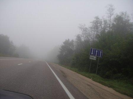 Туман на м-51 усложняет движение транспорта