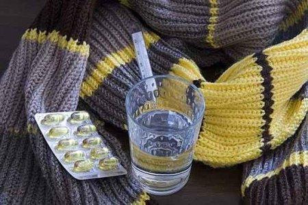 Скоро в Новосибирск придут 2 неизвестных ранее вируса гриппа
