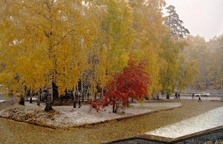 Новосибирск ожидает нестабильная зима с небольшим превышением температурных норм