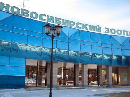 Полторы тонны вкусняшек подарили жители города питомцам Новосибирского зоопарка