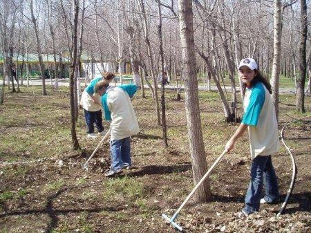13 Октября в Новосибирске состоится общегородской субботник