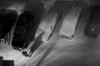 Новосибирец расстрелял свою соседку из охотничьего ружья