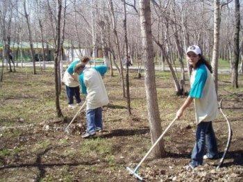 В Новосибирске состоится общегородской субботник