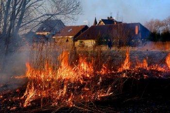 В Новосибирской области введен особый противопожарный режим